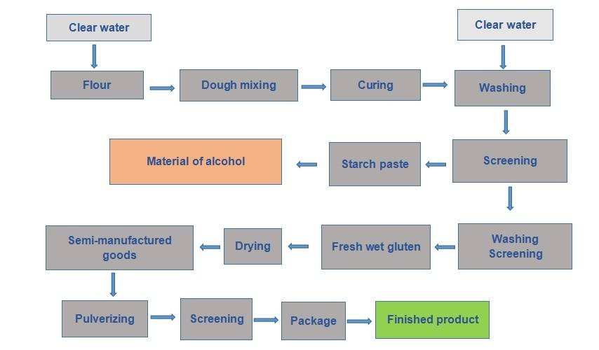 vital wheat gluten production flow sheet